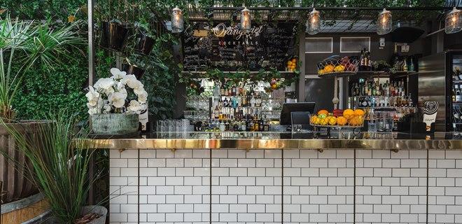 Bar i trädgården